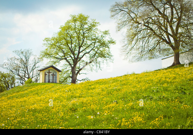 House built on grassy hilltop - Stock-Bilder