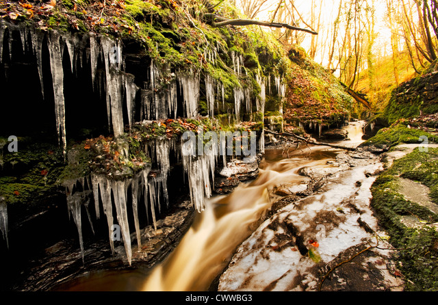 Icicles on trees by frozen river - Stock-Bilder