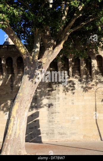 The fortification around the city of Avignon. - Stock Image