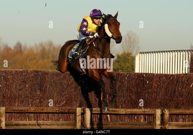 Horse Racing - Fakenham Racecourse - Stock Image