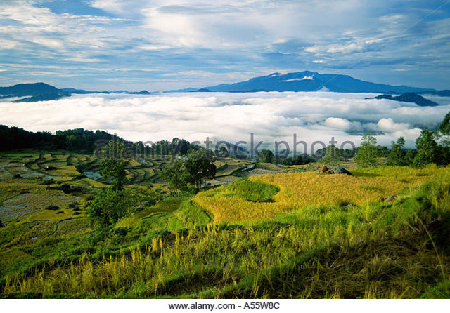 Above the clouds, Toraja Highlands, Sulawesi, Indonesia - Stock Image