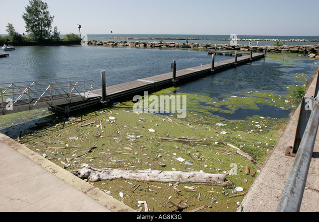 Cleveland Ohio Lake Erie Edgewater Park algae pollution debris - Stock Image