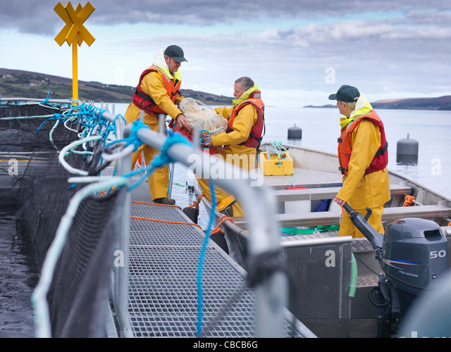 Fishermen bringing in catch from boat - Stock Image
