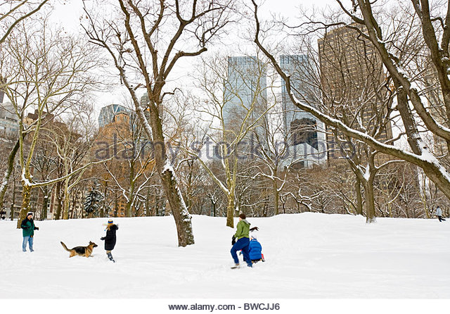 People Play in the Snow, Winter in Central Park, New York City. - Stock Image