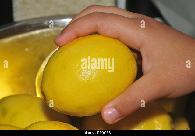 Hand reaches out to select a lemon from a bowl of lemons - Stock Image