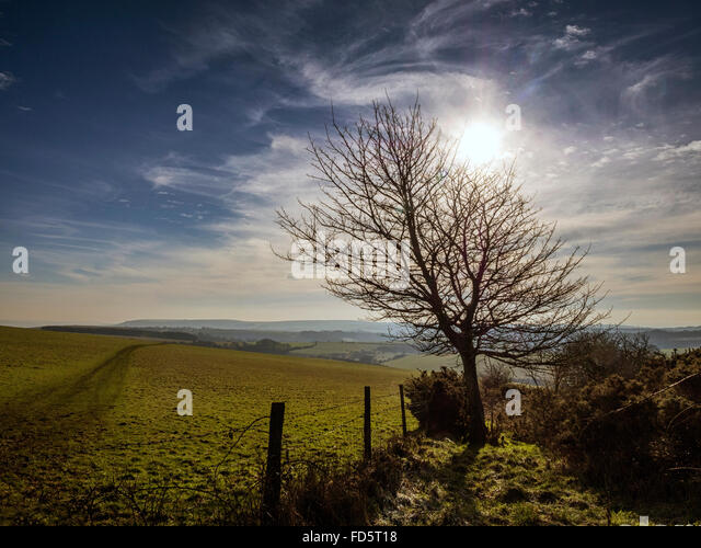 South Downs landscape near Ditchling Beacon, Sussex, in the South Downs National Park - Stock Image