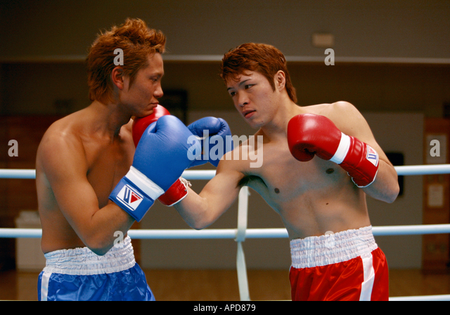Sport Boxing - Stock Image