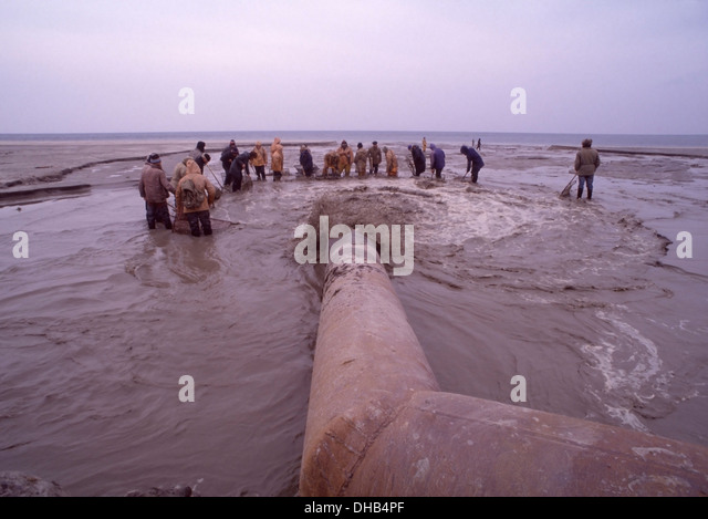 Men with nets stand in the cold Baltic water around the waste water outflow pipe from the Palmnicken amber mine - Stock Image