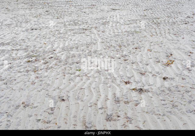 Water-rippled shallow sands on a beach (mid-Cornwall). - Stock Image