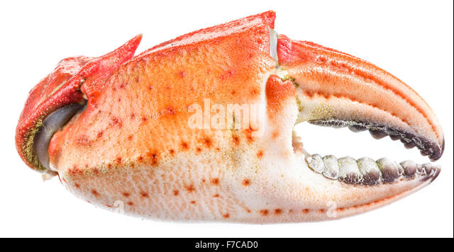 how to cook crab legs and claws