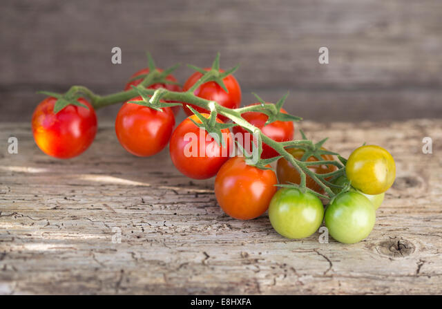 outdoors shot of red and green cherry tomatoes on vine against wood - Stock Image