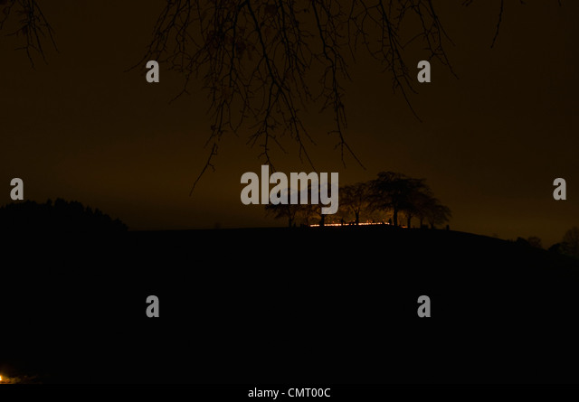 Silhouetted trees and light in the horizon - Stock Image