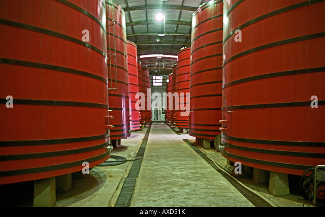 Fermentation vats at Mioranza Winery, Forels da Cunha, Brazil - Stock Image