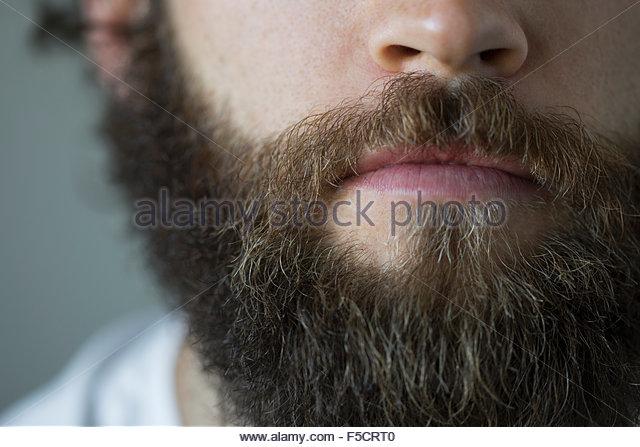 Close up brunette beard - Stock-Bilder
