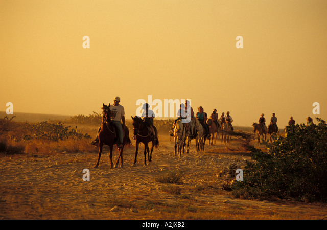 Aruba group of Tourists riding Horses at twillight, netherlands antilles sport outdoor recreation caribbean family - Stock Image