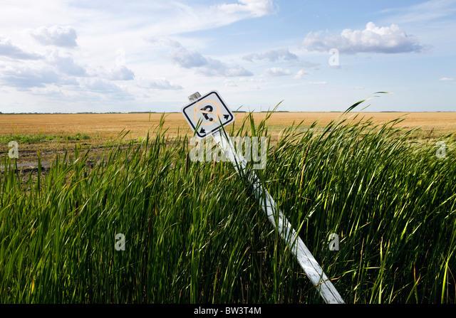 Falling over sign next to a field, Winnipeg, Manitoba, Canada. - Stock-Bilder