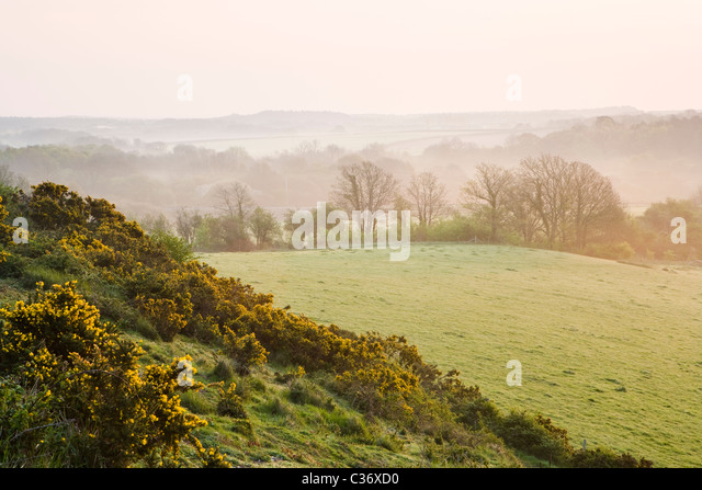 Misty dawn in early spring near Corfe Castle village, Dorset, UK - Stock-Bilder