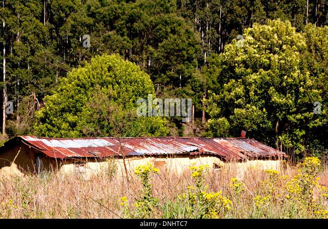 Corrugated Iron Grass Green Stock Photos Amp Corrugated Iron