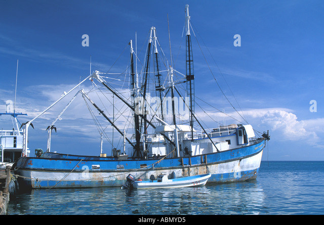Honduras fishing trawler commercial processing Bay Islands Guanaja Bohacca Island - Stock Image