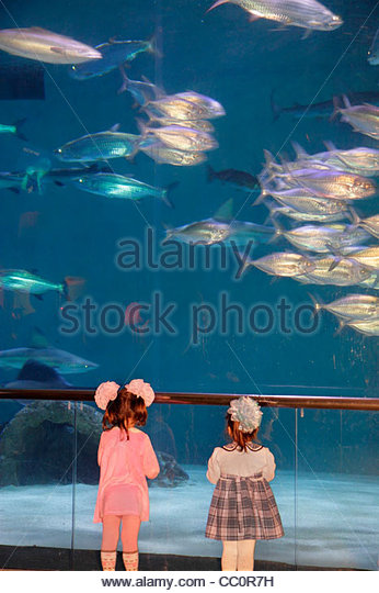 New Orleans Louisiana Woldenberg Riverfront Park Audubon Aquarium of the Americas research conservation aquatic - Stock Image