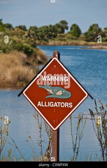 Alligator warning sign with bird control spikes at pond St Marks National Wildlife Refuge - Stock Image