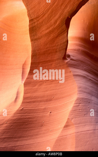 Delicate slickrock formations in middle Antelope Canyon Navajo Indian Reservation Arizona - Stock Image