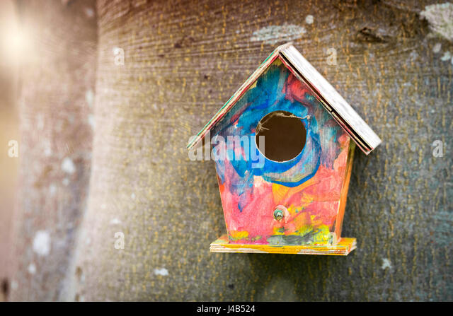 Colorful bird house in childish colors hanging on a tree in a garden in the spring - Stock Image