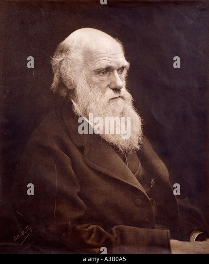 Charles Robert Darwin 1809 1882 - Stock Image
