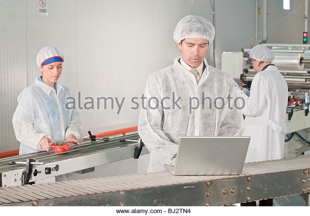 workers and manager at food packing line - Stock Image
