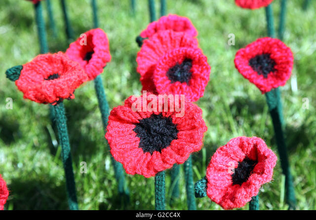Crocheted poppies at the RHS Chelsea Flower Show 2016 - Stock-Bilder