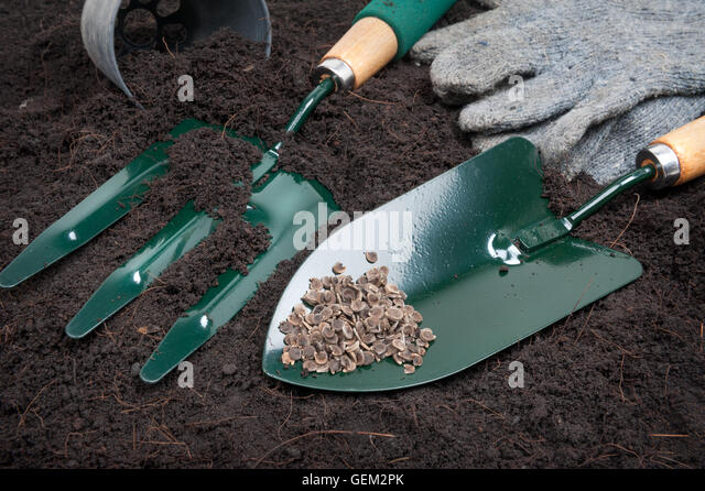 Hoe soil stock photos hoe soil stock images alamy for Gardening tools online in pakistan