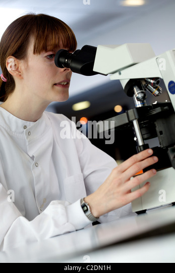 Female lab technician/assistant wearing a white lab coat, looking through a microscope - Stock Image