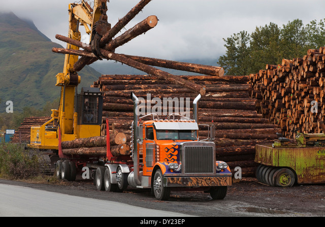 Forwarder with timber stock photos