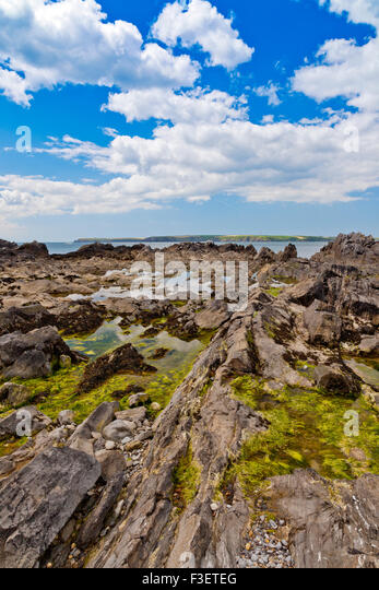 Tidal rock pools on the rugged foreshore of West Angle Bay in the Pembrokeshire Coast National Park, Wales, UK - Stock Image