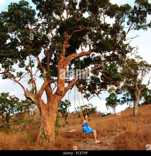 Side View Of A Young Woman On Swing Under Tree - Stock Image