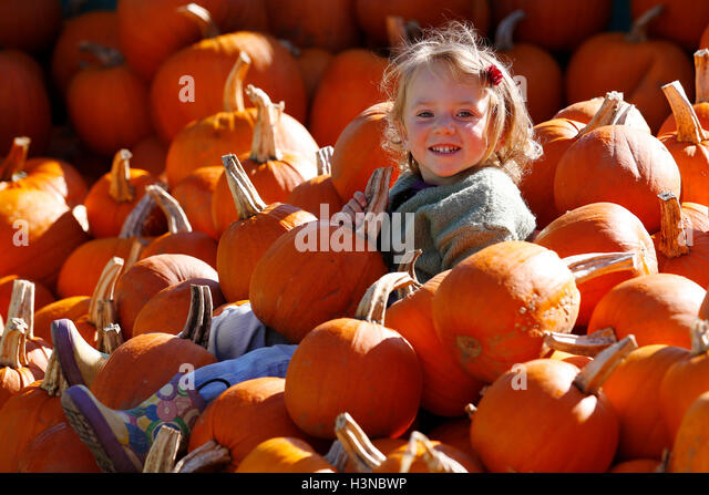 Slindon, near Arundel, West Sussex, UK. 10th October, 2016. Two year old Eleanor Fry, plays among the carving pumpkins - Stock Image
