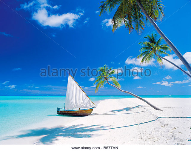 Dhoni (traditional boat) moored by empty beach, Maldives, Indian Ocean, Asia - Stock-Bilder