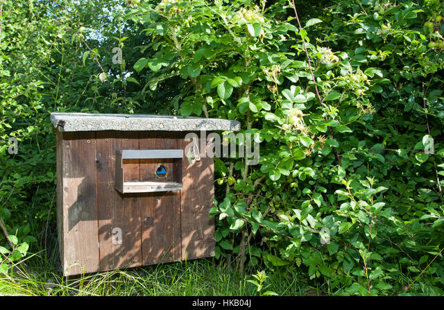 nistkasten f r wildbienen stock photos nistkasten f r wildbienen stock images alamy. Black Bedroom Furniture Sets. Home Design Ideas