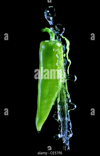Green pepper splashed by water over black background - Stock-Bilder
