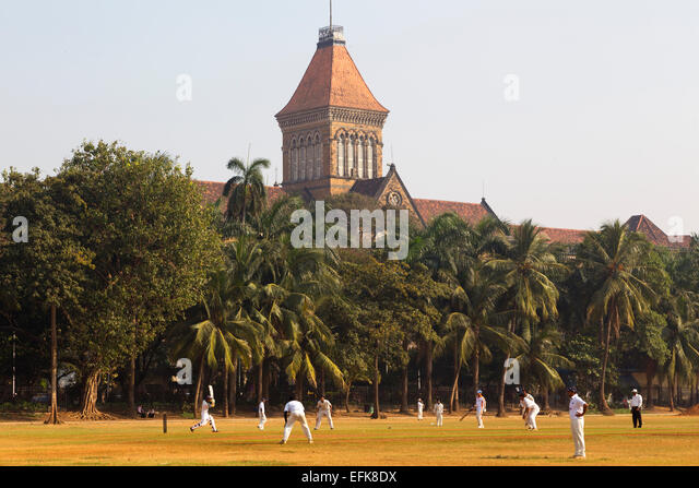 India, Maharashtra, Mumbai, Colaba district, Oval Maidan and men playing cricket - Stock Image