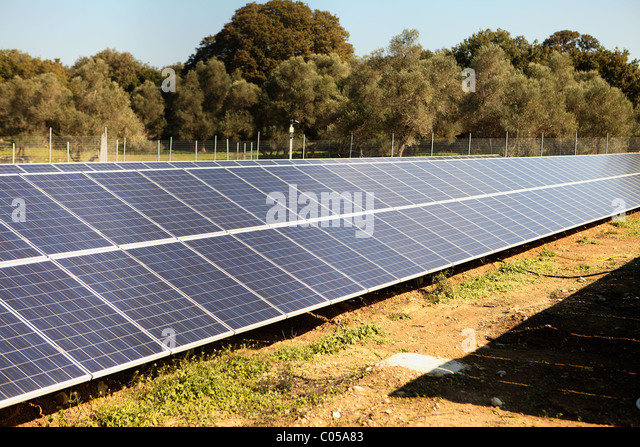 An array of solar panels on the island of Crete, Greece, with an olive grove in the background - Stock Image