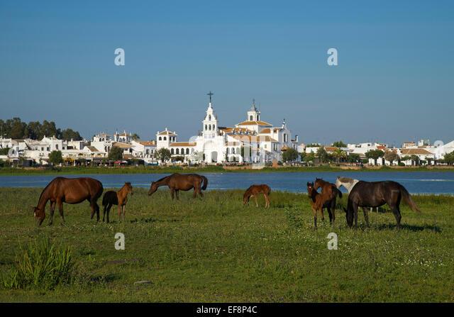 Huelva Stock Photos & Huelva Stock Images - Alamy