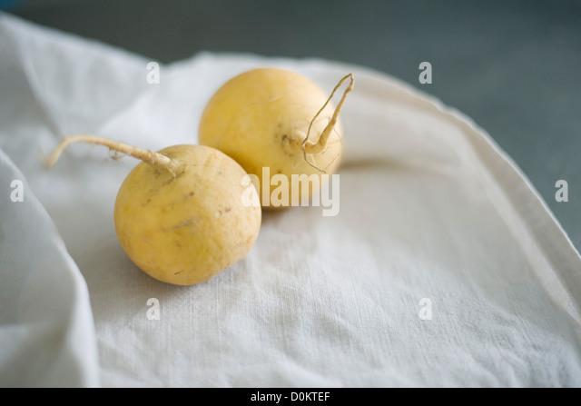 Turnip - Stock Image