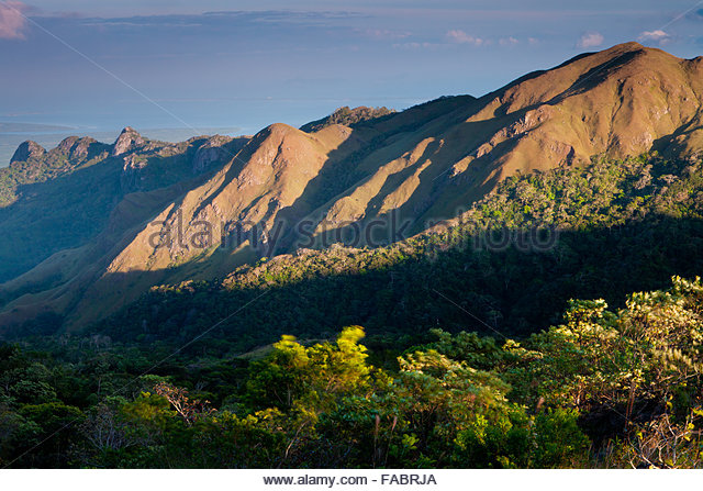 Last light in Altos de Campana National Park, Republic of Panama. - Stock-Bilder