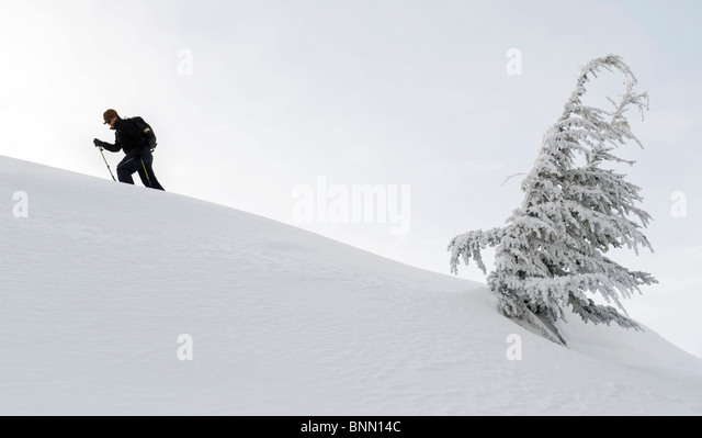 A backcountry skier skinning up a ridge in Turnagain Pass, Alaska Winter - Stock Image