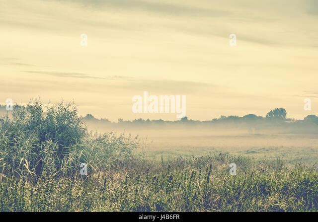 Morning mist in the wilderness on a cold morning in the fall - Stock Image