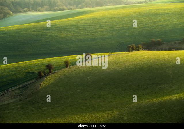 Spring morning in South Downs National Park, East Sussex, England. - Stock Image