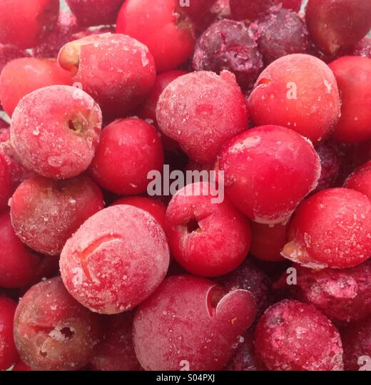 Frozen Cherries - Stock Image