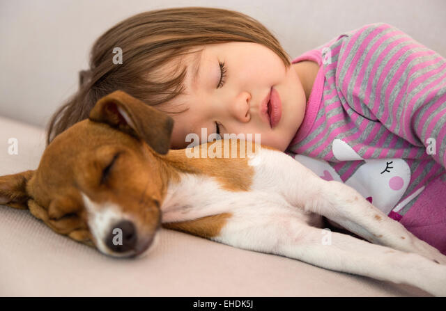 Toddler girl sleeping next to mixed breed puppy dog - Stock Image