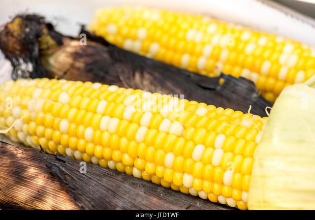 sweet corn - grilling - Stock Image